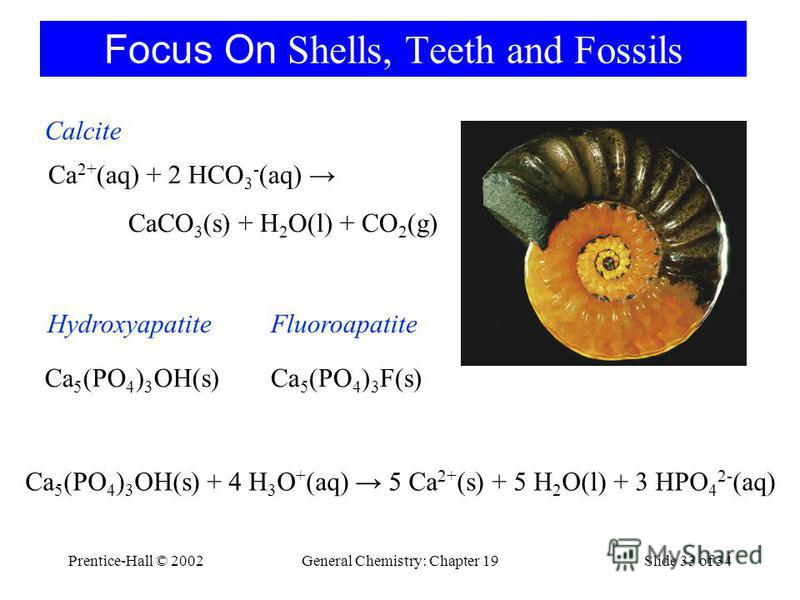 Prentice-Hall © 2002General Chemistry: Chapter 19Slide 33 of 34 Focus On Shells, Teeth and Fossils Ca 2+ (aq) + 2 HCO 3 - (aq) CaCO 3 (s) + H 2 O(l) + CO 2 (g) Calcite Ca 5 (PO 4 ) 3 OH(s) + 4 H 3 O + (aq) 5 Ca 2+ (s) + 5 H 2 O(l) + 3 HPO 4 2- (aq) F