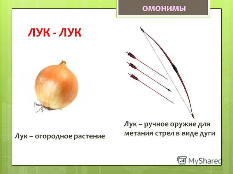 ЛУК - ЛУК Лук – огородное растение Лук – ручное оружие для метания стрел в виде дуги омонимы