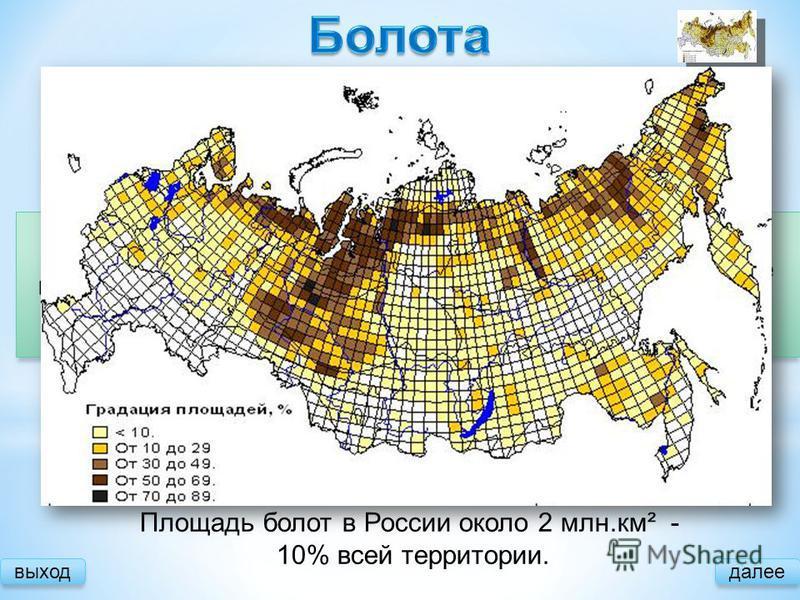 выход далее Причины образования: Большое количество осадков Малое испарение Замедленный сток Площадь болот в России около 2 млн.км² - 10% всей территории. Зарастание водоемов