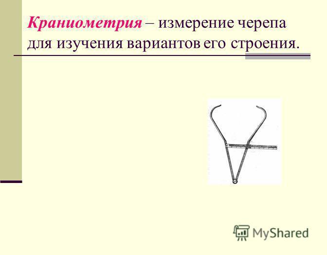Краниометрия