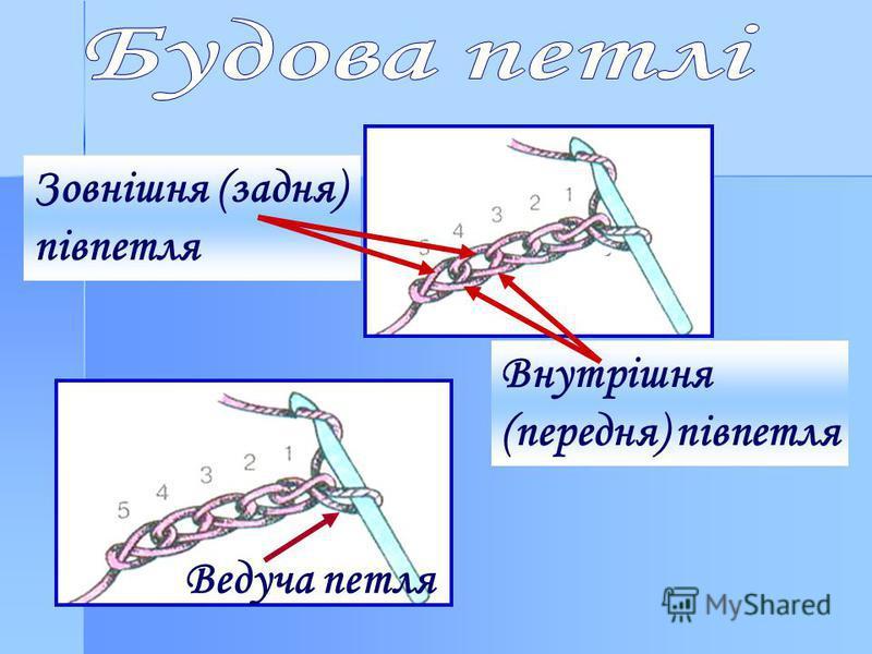 Ведуча петля Зовнішня (задня) півпетля Внутрішня (передня) півпетля