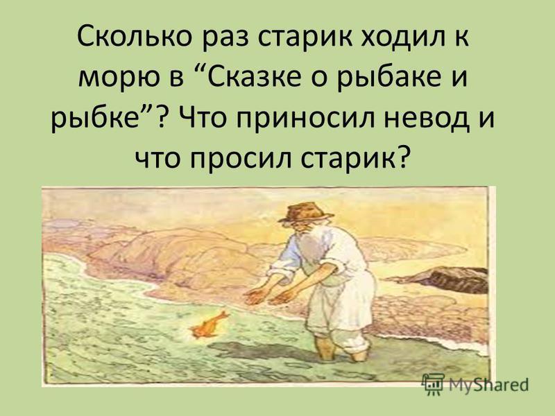 Сколько раз старик ходил к морю в Сказке о рыбаке и рыбке? Что приносил невод и что просил старик?