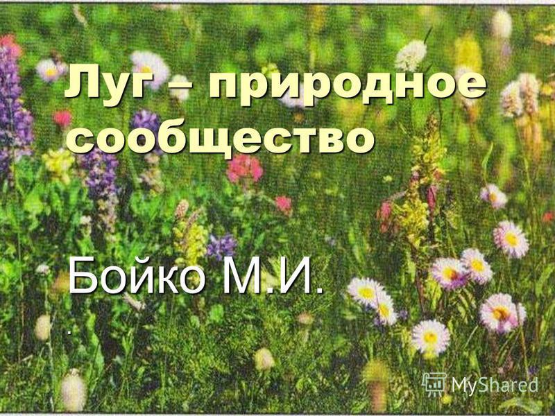 Луг – природное сообщество Бойко М.И..