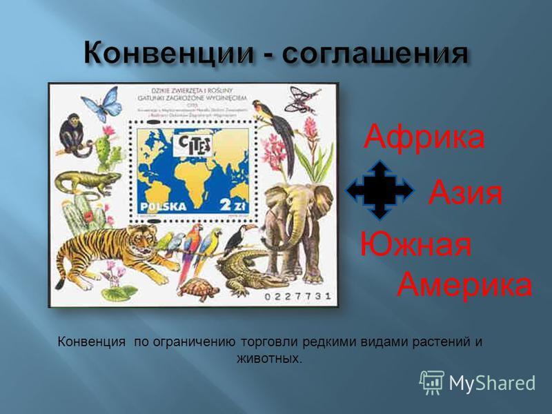 Конвенция по ограничению торговли редкими видами растений и животных. Африка Азия Южная Америка