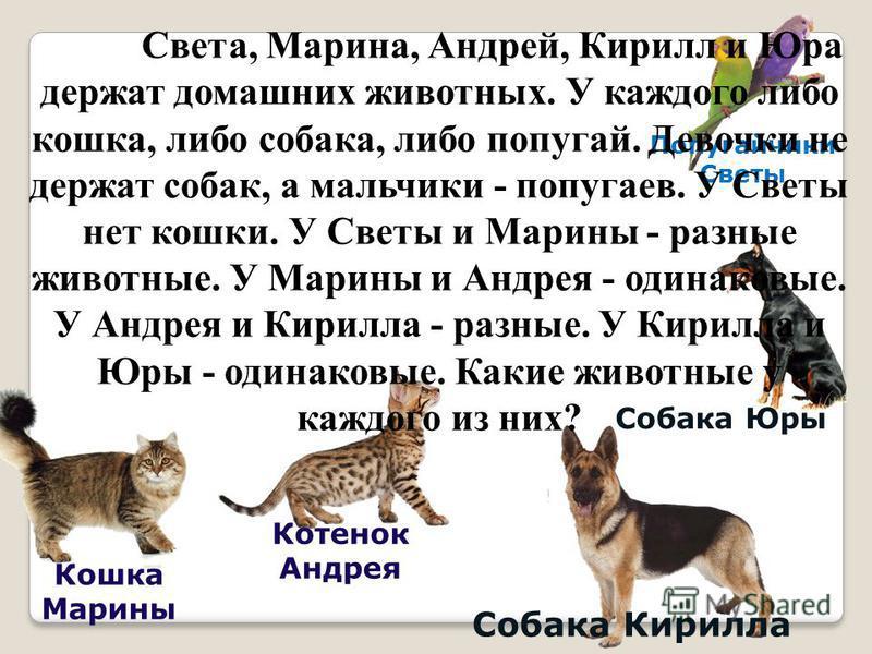 Попугайчики Светы Кошка Марины Собака Кирилла Собака Юры Котенок Андрея Света, Марина, Андрей, Кирилл и Юра держат домашних животных. У каждого либо кошка, либо собака, либо попугай. Девочки не держат собак, а мальчики - попугаев. У Светы нет кошки.