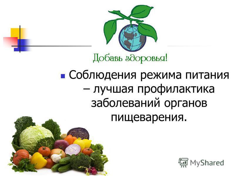 Соблюдения режима питания – лучшая профилактика заболеваний органов пищеварения.