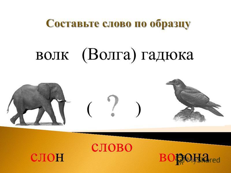 волк(Волга) гадюка слово слон ворона ( )