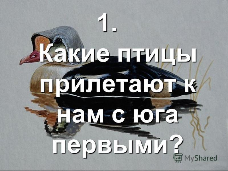 1. Какие птицы прилетают к нам с юга первыми?