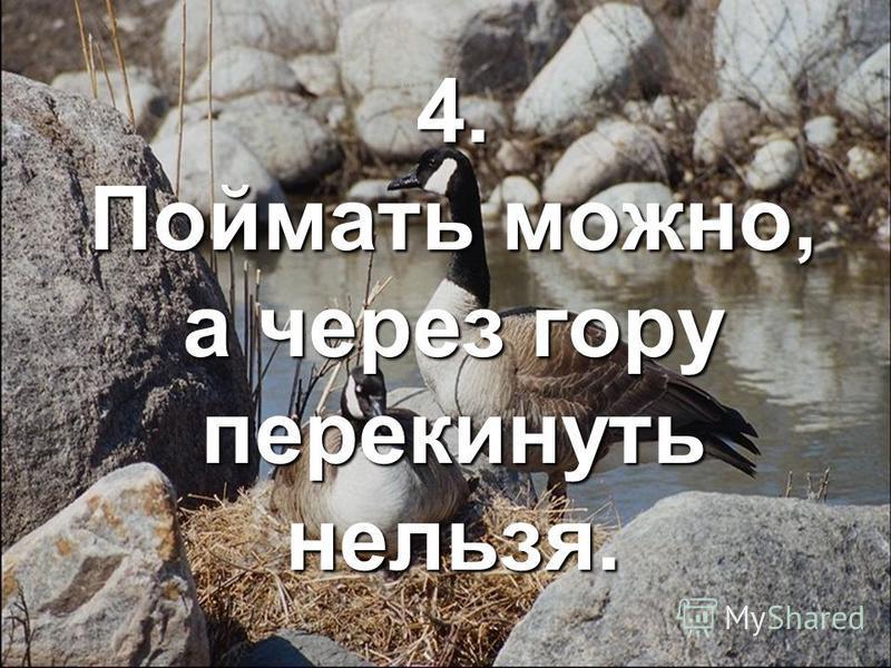 4. Поймать можно, а через гору перекинуть нельзя.