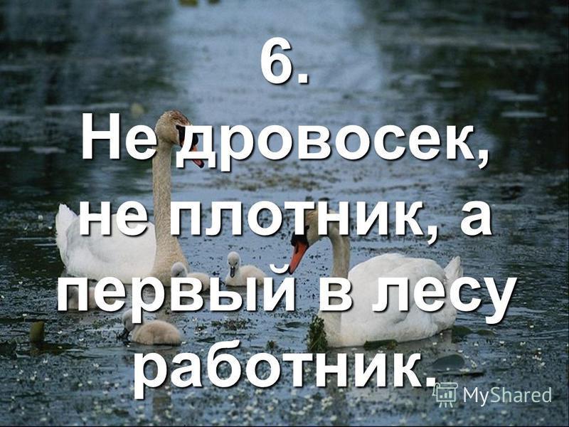 6. Не дровосек, не плотник, а первый в лесу работник.
