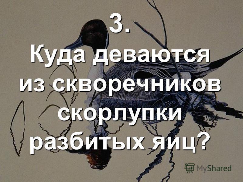 3. Куда деваются из скворечников скорлупки разбитых яиц?