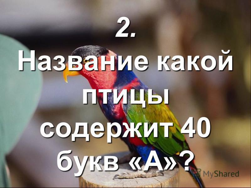 2. Название какой птицы содержит 40 букв «А»?