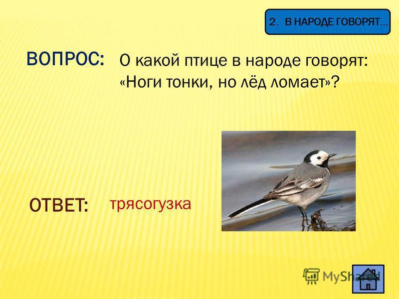ВОПРОС: Летом бежит, Зимой спит, Весна настала – Опять побежала. ОТВЕТ: Река 1. ЗАГАДКИ
