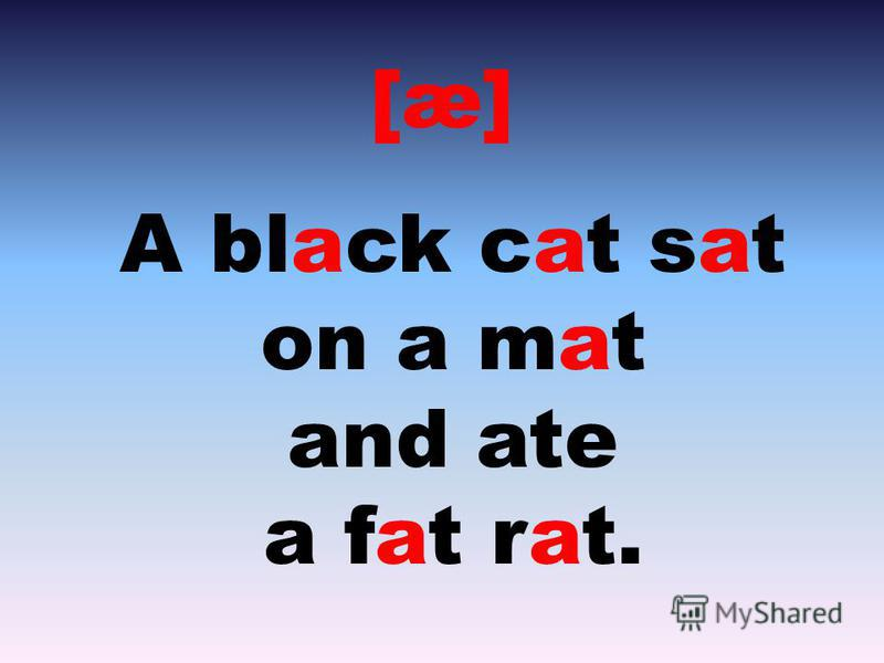 [æ] A black cat sat on a mat and ate a fat rat.