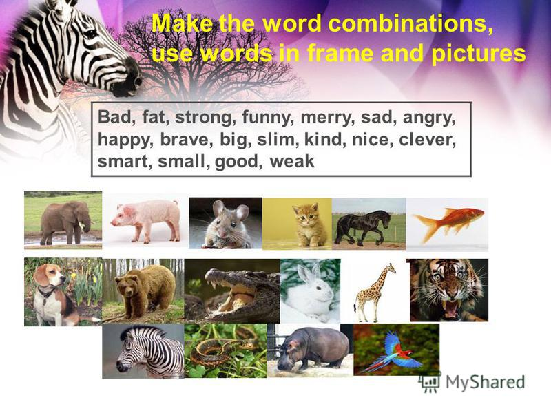 Make the word combinations, use words in frame and pictures Bad, fat, strong, funny, merry, sad, angry, happy, brave, big, slim, kind, nice, clever, smart, small, good, weak