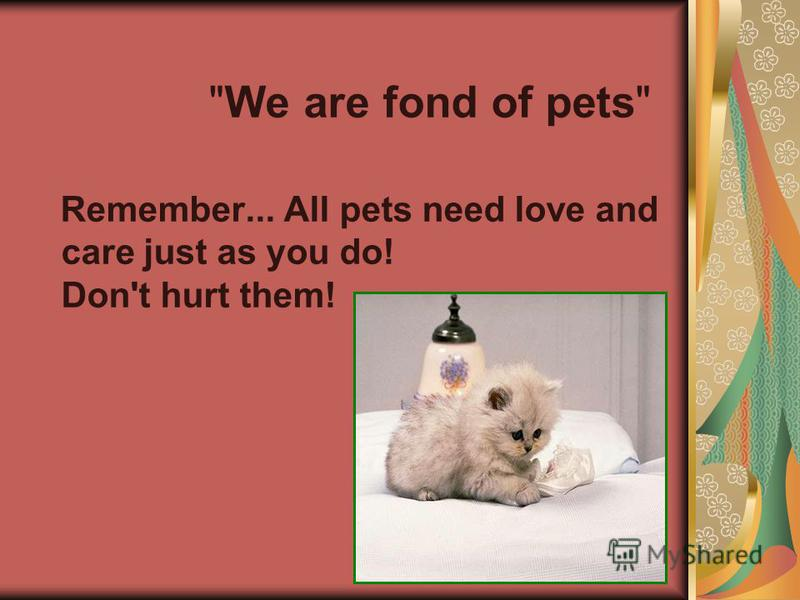 We are fond of pets Remember... All pets need love and care just as you do! Don't hurt them!