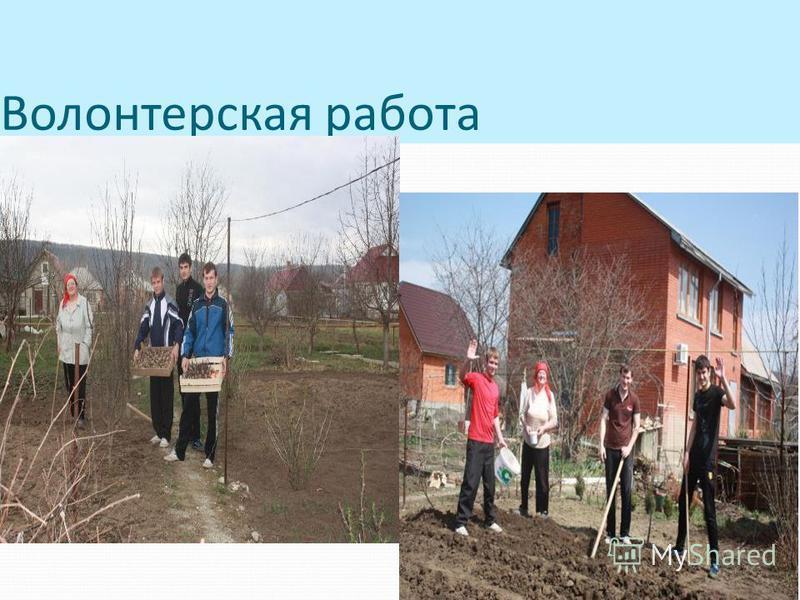 Волонтерская работа