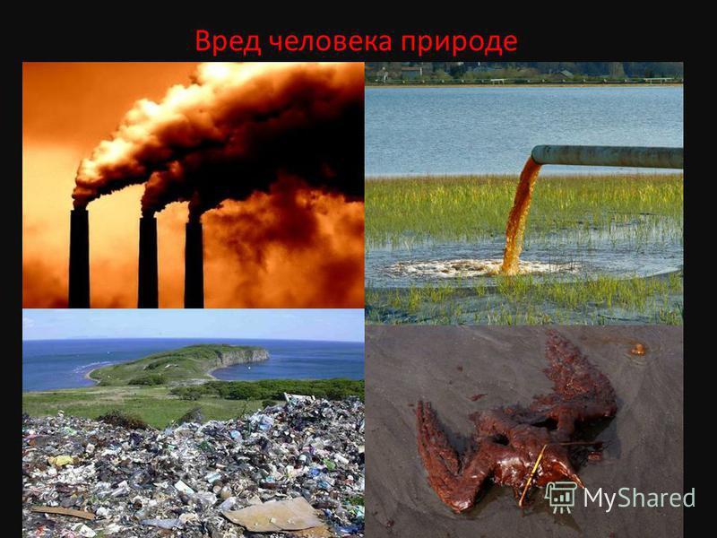 Вред человека природе