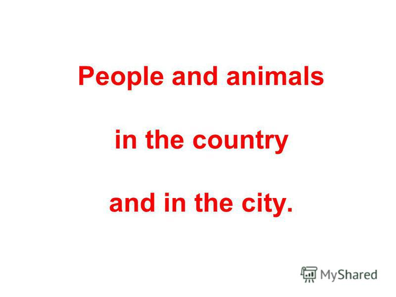 People and animals in the country and in the city.