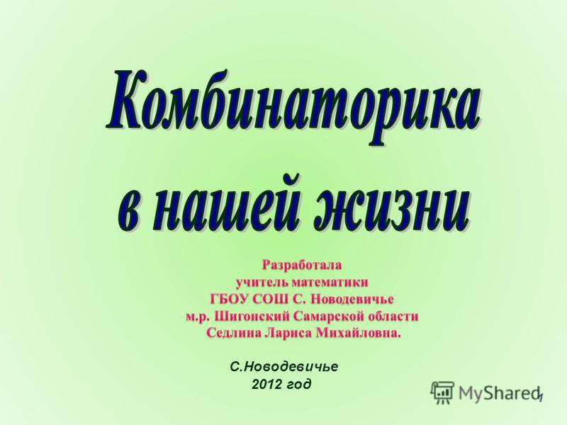 1 С.Новодевичье 2012 год