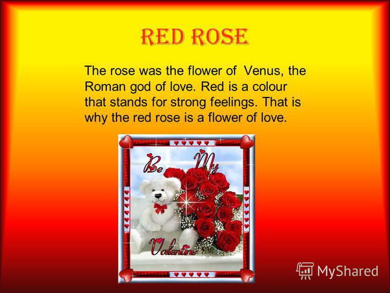 RED ROSE The rose was the flower of Venus, the Roman god of love. Red is a colour that stands for strong feelings. That is why the red rose is a flower of love.