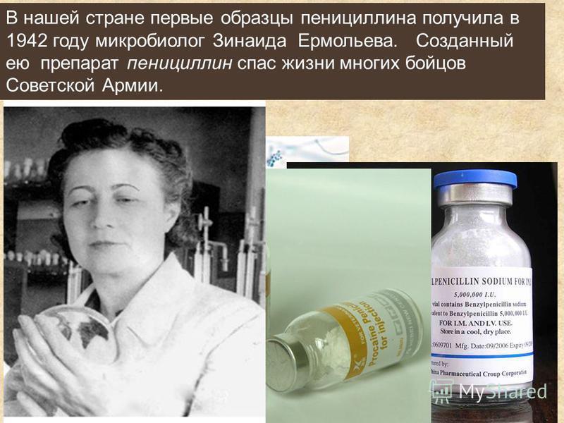 В нашей стране первые образцы пенициллина получила в 1942 году микробиолог Зинаида Ермольева. Созданный ею препарат пенициллин спас жизни многих бойцов Советской Армии.
