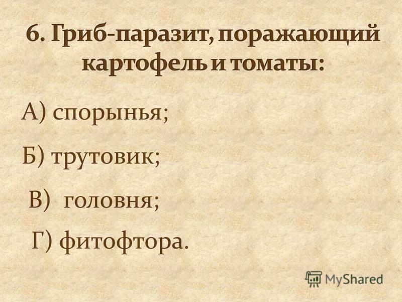 А) спорынья; Б) трутовик; В) головня; Г) фитофтора.