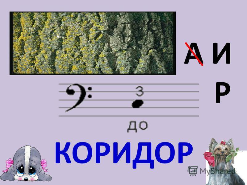 А И Р КОРИДОР