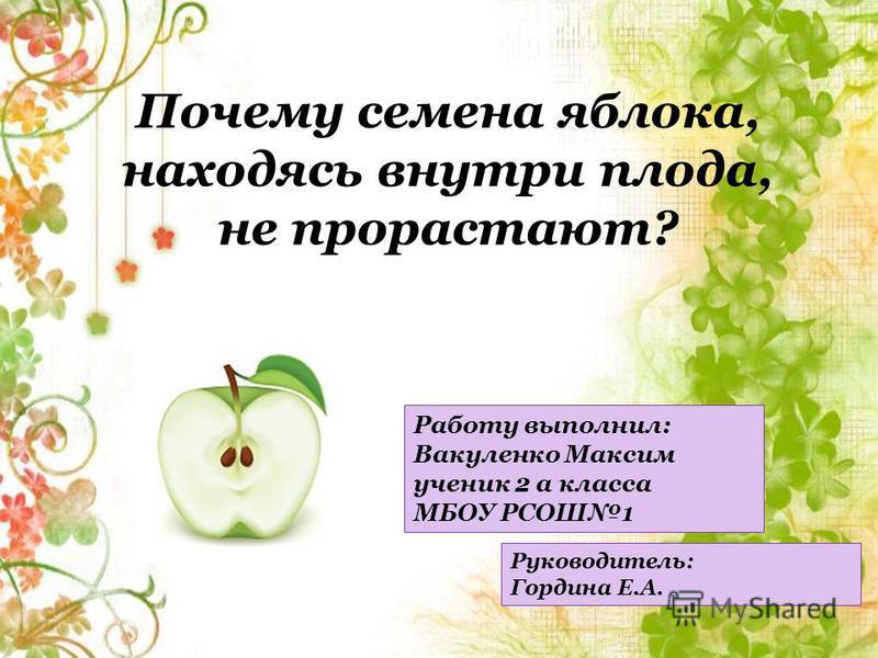 Работу выполнил: Вакуленко Максим ученик 2 а класса МБОУ РСОШ1 Руководитель: Гордина Е.А.