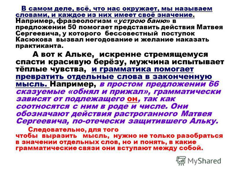 В самом деле, всё, что нас окружает, мы называем словами, и каждое из них имеет своё значение. Например, фразеологизм «устрою баню» в предложении 50 помогает представить действия Матвея Сергеевича, у которого бессовестный поступок Касюкова вызвал нег