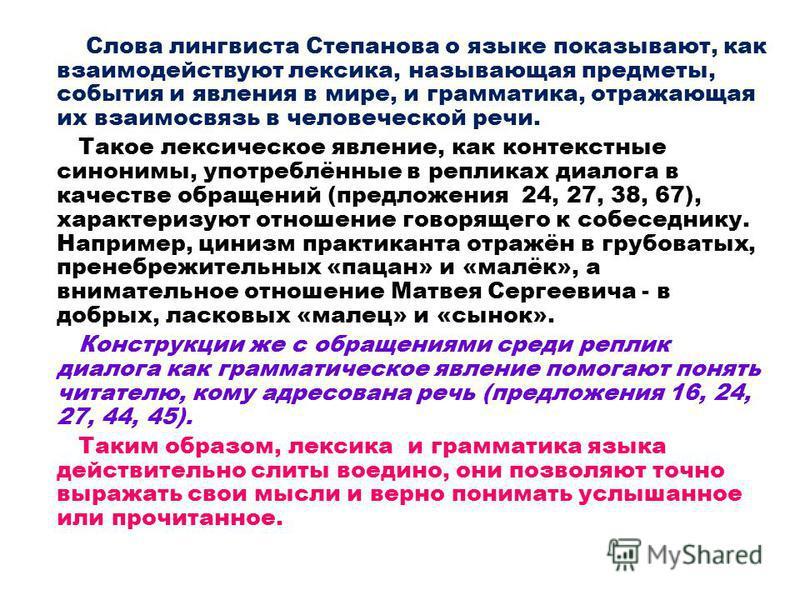 Слова лингвиста Степанова о языке показывают, как взаимодействуют лексика, называющая предметы, события и явления в мире, и грамматика, отражающая их взаимосвязь в человеческой речи. Такое лексическое явление, как контекстные синонимы, употреблённые