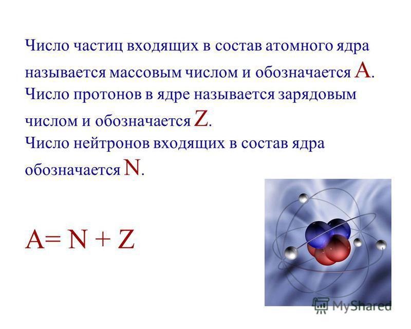 Число частиц входящих в состав атомного ядра называется массовым числом и обозначается A. Число протонов в ядре называется зарядовым числом и обозначается Z. Число нейтронов входящих в состав ядра обозначается N. A= N + Z