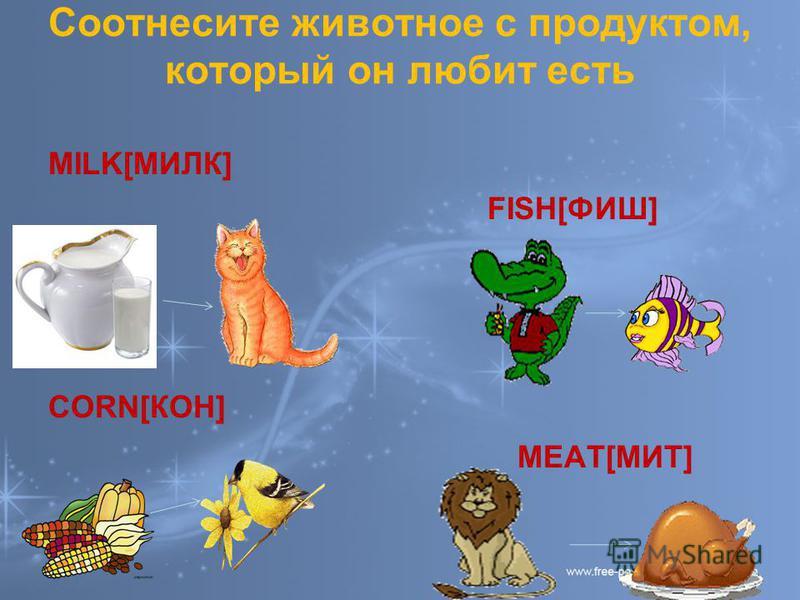 Соотнесите животное с продуктом, который он любит есть MILK[МИЛК] FISH[ФИШ] CORN[КОН] MEAT[МИТ]