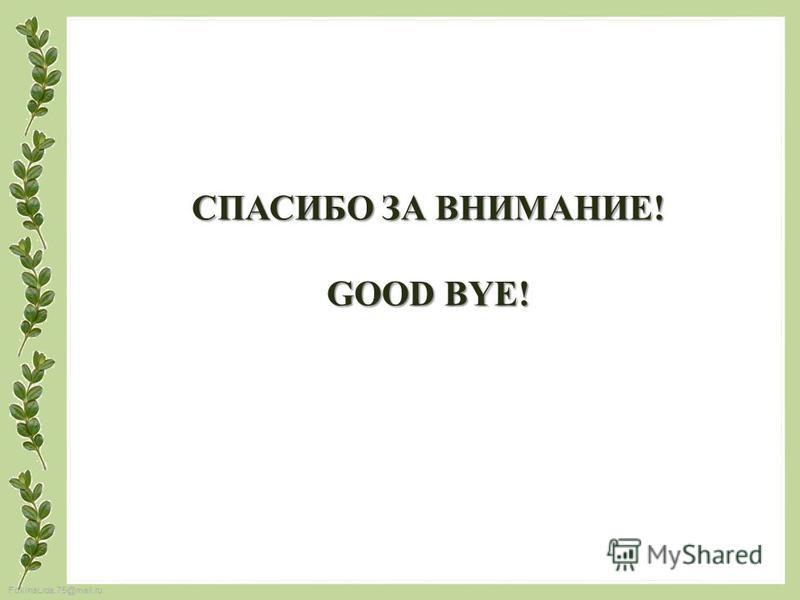 FokinaLida.75@mail.ru СПАСИБО ЗА ВНИМАНИЕ! GOOD BYE!