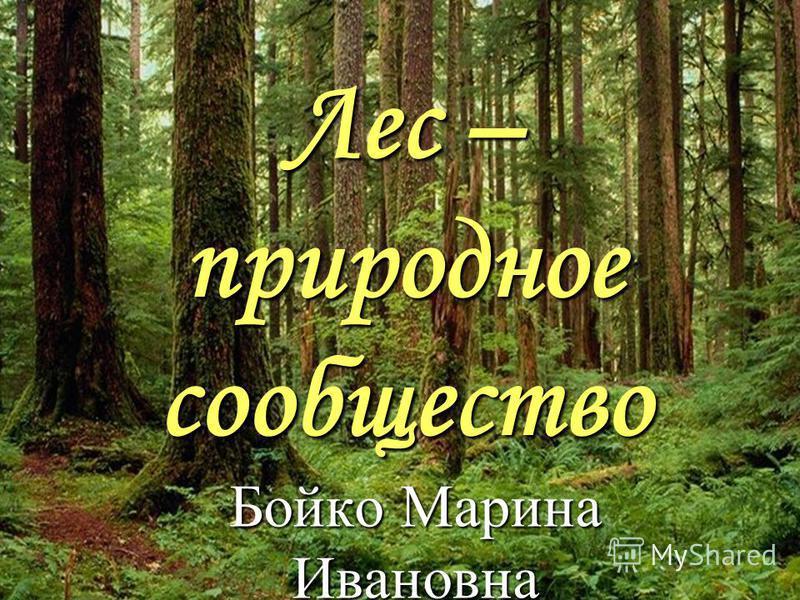 Лес – природное сообщество Бойко Марина Ивановна