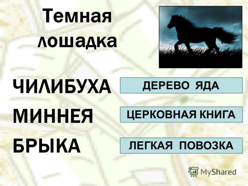 Темная лошадка ЧИЛИБУХА МИННЕЯ БРЫКА ДЕРЕВО ЯДА ЦЕРКОВНАЯ КНИГА ЛЕГКАЯ ПОВОЗКА