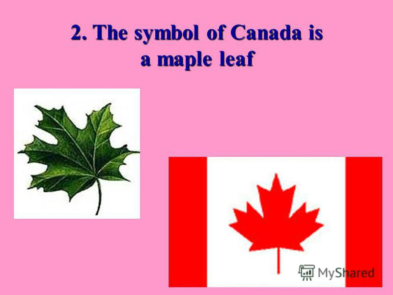 2. The symbol of Canada is a maple leaf