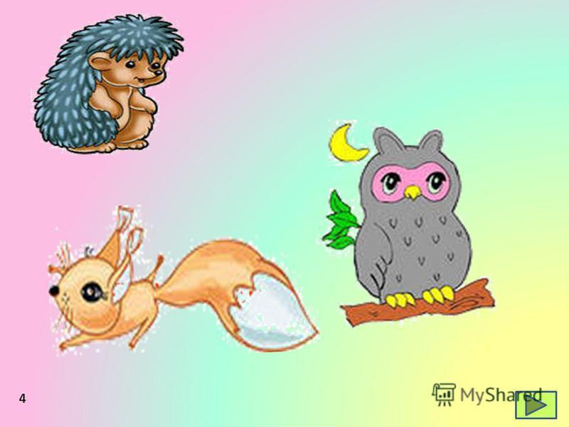 der Igel das Eichhörnchen die Eule 4