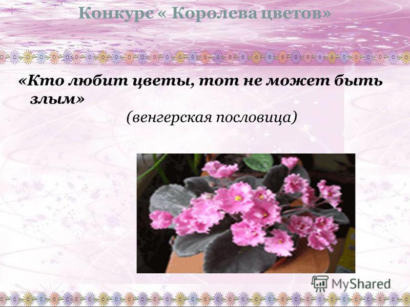 Конкурс « Королева цветов» «Кто любит цветы, тот не может быть злым» (венгерская пословица)