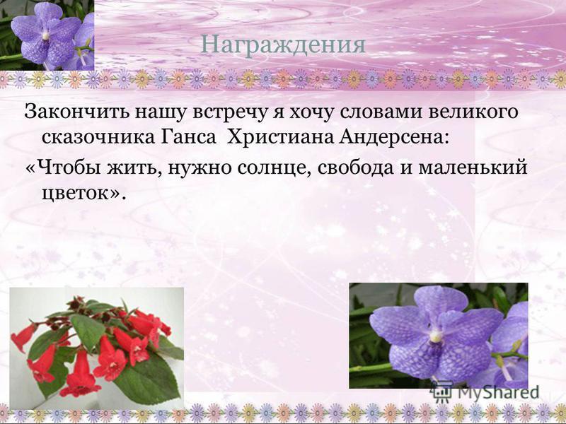 Награждения Закончить нашу встречу я хочу словами великого сказочника Ганса Христиана Андерсена: «Чтобы жить, нужно солнце, свобода и маленький цветок».