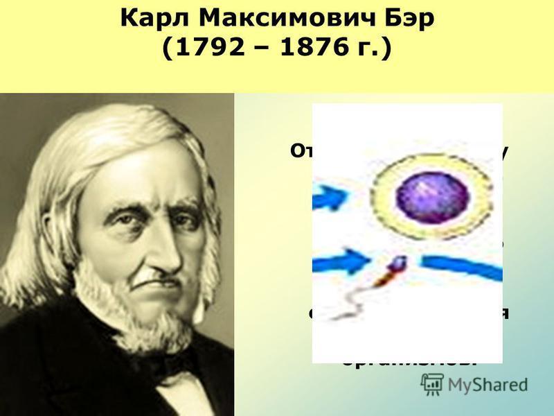 Карл Максимович Бэр (1792 – 1876 г.) 1827 год Открыл яйцеклетку млекопитающих. Сформулировал положение, что клетка не только единица строения, но и единица развития живых организмов.