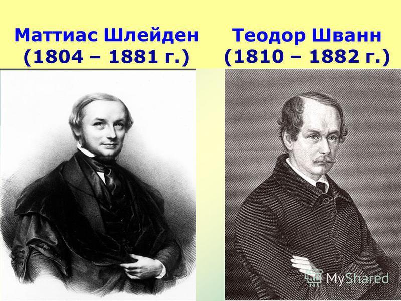 Маттиас Шлейден (1804 – 1881 г.) Теодор Шванн (1810 – 1882 г.)