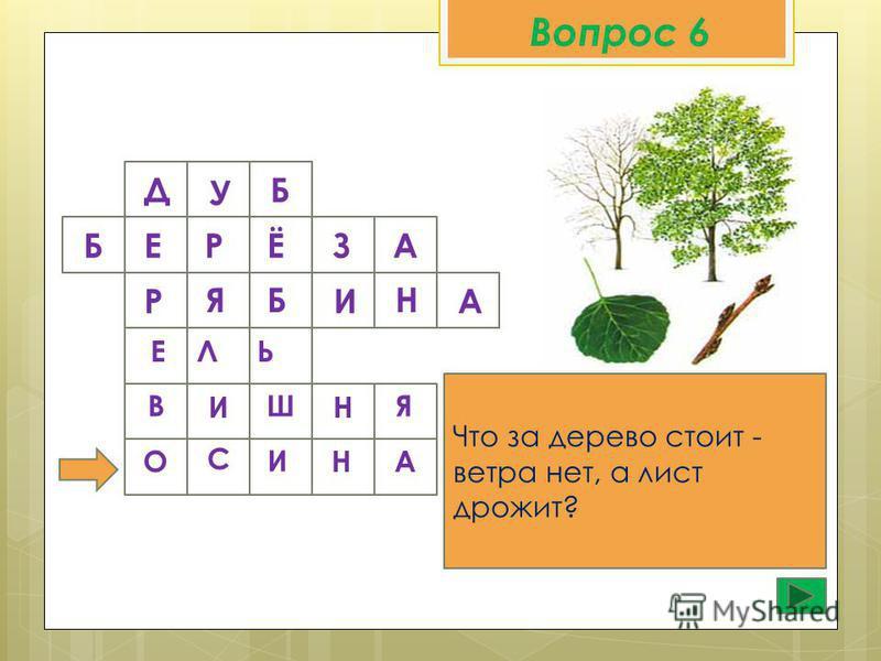 Вопрос 6 Д У Б Что за дерево стоит - ветра нет, а лист дрожит? Б Е Р Ё З А Р Б Я И Н А ЕЛЬ В И Ш Н Я О С И Н А