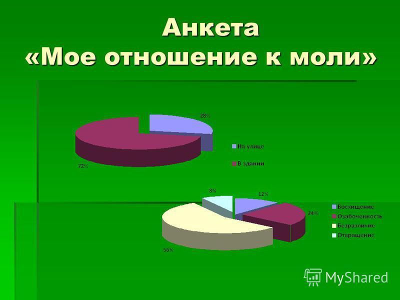 Анкета «Мое отношение к моли» Анкета «Мое отношение к моли»