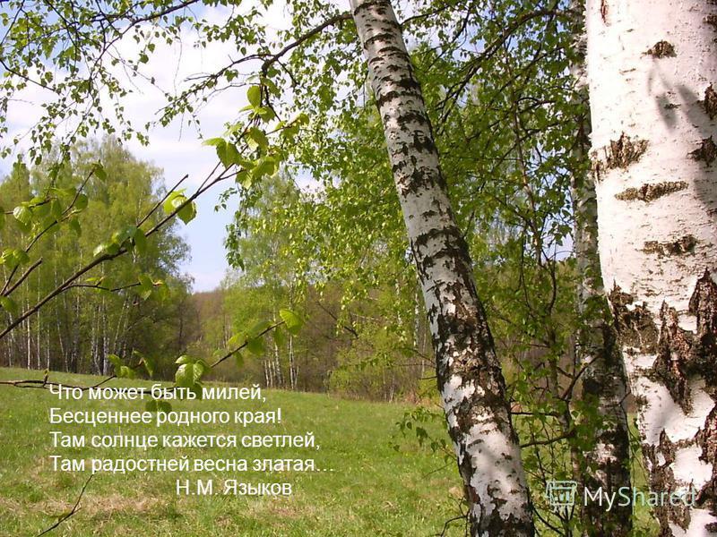 Что может быть милей, Бесценнее родного края! Там солнце кажется светлей, Там радостней весна златая… Н.М. Языков