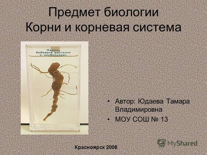 Предмет биологии Корни и корневая система Автор: Юдаева Тамара Владимировна МОУ СОШ 13 Красноярск 2006