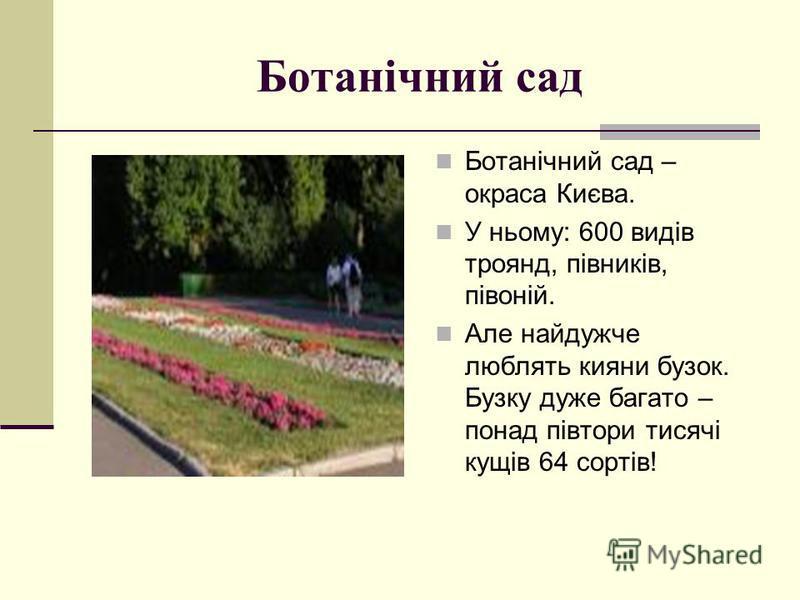 Ботанічний сад Ботанічний сад – окраса Києва. У ньому: 600 видів троянд, півників, півоній. Але найдужче люблять кияни бузок. Бузку дуже багато – понад півтори тисячі кущів 64 сортів!