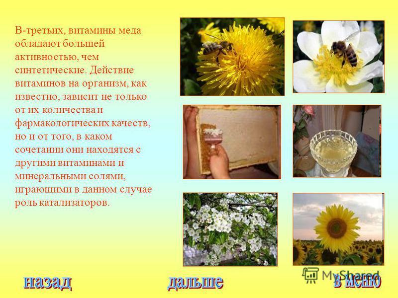 В-третьих, витамины меда обладают большей активностью, чем синтетические. Действие витаминов на организм, как известно, зависит не только от их количества и фармакологических качеств, но и от того, в каком сочетании они находятся с другими витаминами