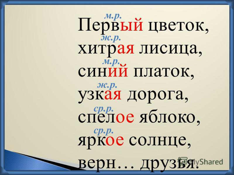 Первый цветок, хитрая лисица, синий платок, узкая дорога, спелое яблоко, яркое солнце, верн… друзья. м.р. ж.р. м.р. ср.р.