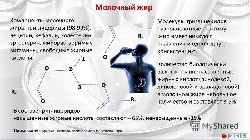Характеристика основных веществ молока Характеристика основных веществ молока